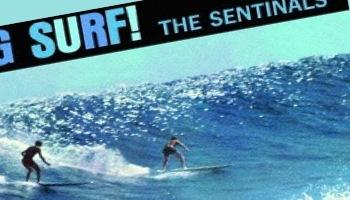 サーフィン/ホット・ロッド 1200 ~夏だ! ビーチだ! サーフィンだ! ホット・ロッドだ!~
