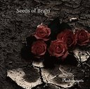 Seeds of Brain [Limited Release]