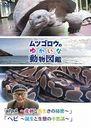 『ムツゴロウのゆかいな動物図鑑』シリーズ 「カメ ~産卵と長生きの秘密~」「ヘビ ~誕生と生態の不思議~」