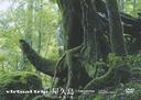 virtual trip 屋久島 part2 永遠の森