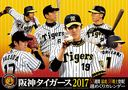 卓上 阪神タイガース 週めくり