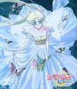 アニメ「美少女戦士セーラームーン Crystal」