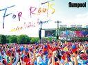 flumpool 真夏の野外★LIVE 2015「FOR ROOTS」 ~オオサカ・フィールズ・フォーエバー~ at OSAKA OIZUMI RYOKUCHI