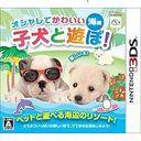 オシャレでかわいい子犬と遊ぼ!海編