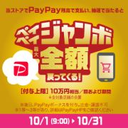 PayPay Campaign