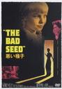 悪い種子 【DVD】